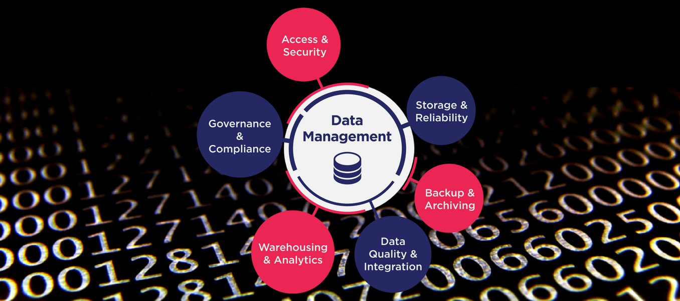 Fusion Professionals Data Management Core Functions